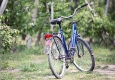 老自行车在果树园 免版税库存照片