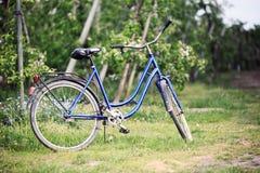 老自行车在果树园 库存照片