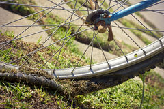 老自行车轮胎 库存图片