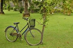老自行车 免版税库存照片