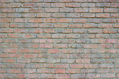 老色的砖墙背景 库存照片
