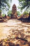 老菩萨雕象在菩萨寺庙,阿尤特拉利夫雷斯,泰国 免版税库存照片