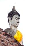 老菩萨雕象 免版税库存图片