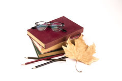 老葡萄酒书、玻璃、秋叶和颜色铅笔isolat 库存照片