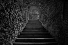 老葡萄酒库隧道入口 导致地下的楼梯 免版税库存照片