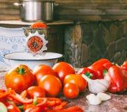 老葡萄酒手工研磨机和切片新鲜的蕃茄、红色甜椒和大蒜在桌上做的自创调味汁 库存图片