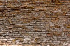 老葡萄酒砖墙纹理背景,威尼斯,意大利 免版税图库摄影