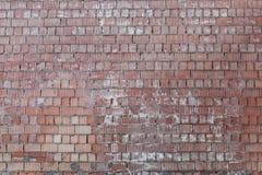 老葡萄酒砖墙背景 库存照片