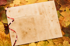 老葡萄酒空白纸片在五颜六色的槭树的离开 感恩 免版税库存照片
