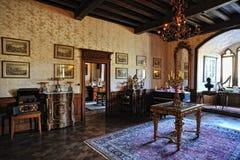 老葡萄酒空间。 Reichenstein城堡在德国 库存图片