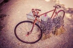 老葡萄酒自行车用淡紫色在普罗旺斯开花 免版税图库摄影