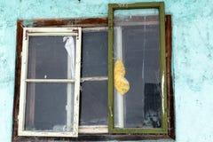 老葡萄酒视窗 免版税库存图片