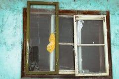 老葡萄酒视窗 库存图片