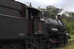 老蒸汽机车和背景历史的风景 库存图片
