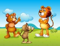 老虎、猴子和鼠 免版税图库摄影