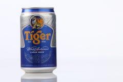 老虎啤酒 库存图片