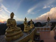 老虎寺庙, Krabi,泰国 库存图片