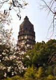 老虎小山在苏州 免版税图库摄影
