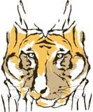 老虎抽象动物设计设计 免版税图库摄影