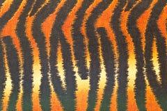 老虎样式 免版税图库摄影