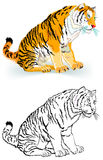 老虎的五颜六色的黑白样式 免版税图库摄影