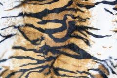 老虎皮肤纹理  库存图片