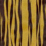老虎皮肤背景纹理 图库摄影