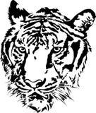 老虎顶头剪影。 免版税库存图片