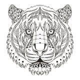 老虎顶头zentangle传统化了,导航,例证,样式, fr 免版税库存图片