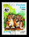 老虎(豹属底格里斯河),世界野生生物资金serie,大约1984年 库存照片