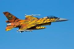 老虎F-16战斗机定点飞越 免版税图库摄影