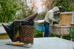 老蜂吸烟者 养蜂业工具 蜂农在蜂房工作在蜂房附近 免版税库存图片