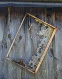 老蜂窝框架在墙壁上垂悬 库存照片