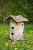 老蜂蜂房 免版税库存照片