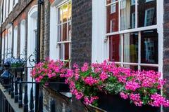老行格住宅在威斯敏斯特,伦敦 免版税库存照片
