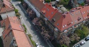 老街道鸟瞰图有开花的日本樱花, Uzhgorod,乌克兰 股票视频