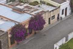老街道 图库摄影