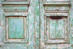 老被佩带的树木繁茂的门 免版税库存照片