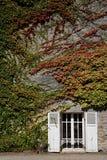 老被关闭的窗口和老石制品,法国 免版税库存图片