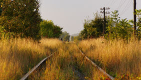 老被忘记的铁路某处在东欧 库存照片