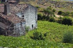 老被放弃的农场在亚速尔群岛 免版税库存图片