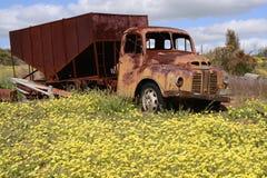 老被放弃的奥斯汀卡车在西澳州 免版税库存图片