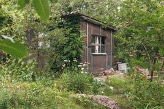 老被放弃的庭院家的葡萄酒绿色废墟在coun看 免版税库存照片