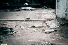 老被放弃的房子和使用的塑料注射器 毒瘾的问题在社会的 免版税库存照片