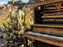 老被放弃的打破的钢琴和仙人掌在拉斯维加斯内华达附近 库存图片