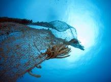 老被放弃的捕鱼网 免版税库存图片