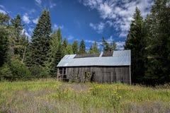 老被放弃的谷仓在国家 免版税图库摄影
