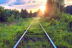 老被放弃的铁路长满与草 铁路轨道通过在日落的森林美丽如画的工业风景 免版税库存照片