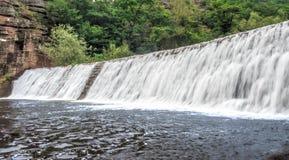 老被放弃的水坝在森林里 免版税图库摄影