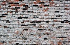 老被毁坏的红砖墙壁绘了白色纹理 库存图片
